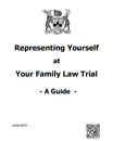 Representing Yourself at Your Family Law Trial – A Guide