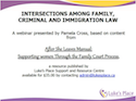 Intersections Among Family, Criminal, and Immigration Law thumbnail